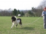 Pferde, Menschen, Kids in Action